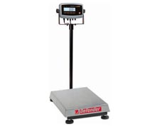 Square Washdown Bench/Floor Scale Model Defender 5000